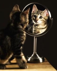 """""""Зеркало"""""""